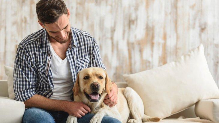 犬がくっついてくる5つの心理