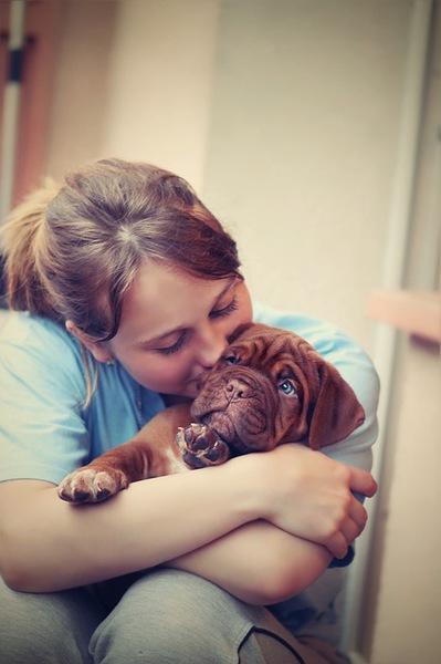 行き過ぎた愛情は危険!愛犬への過干渉について