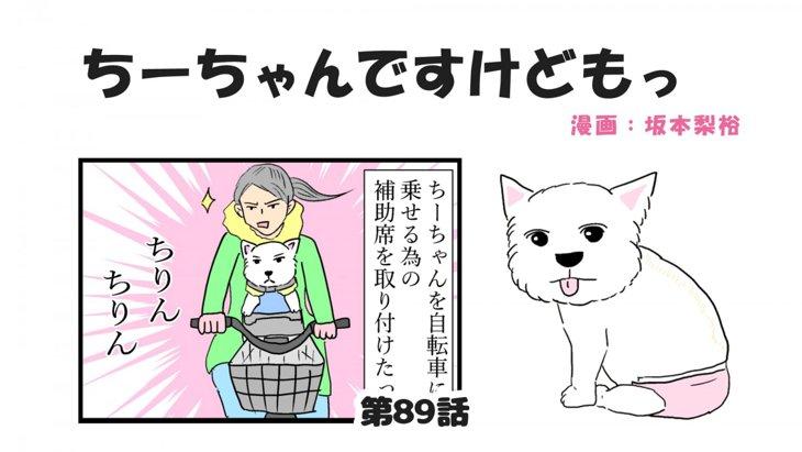 ちーちゃんですけどもっ【第89話】「乗り物を覚えた犬」
