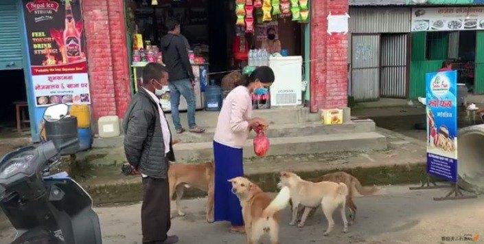 【優しい世界】犬の国ネパール『プジャ』で野良犬たちの祝福を願って…