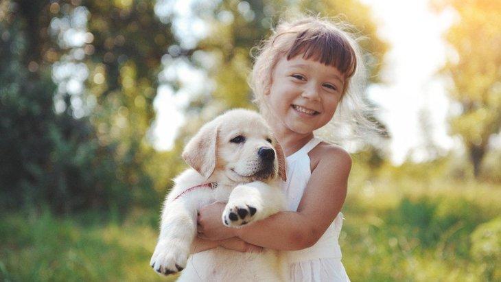 犬の抱っこの正しい仕方!抱っこを嫌がる理由とせがむ時の対処法