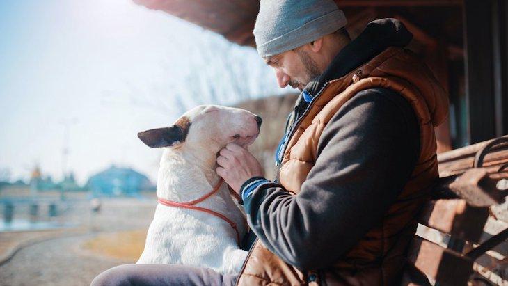 「犬に話しかける人は知性的」この研究って本当かどうかを検証