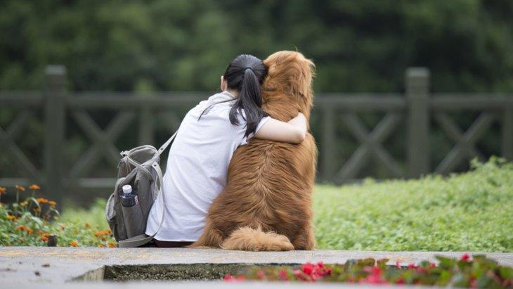 優しい♡犬が人を『慰めてくれる理由』6つ