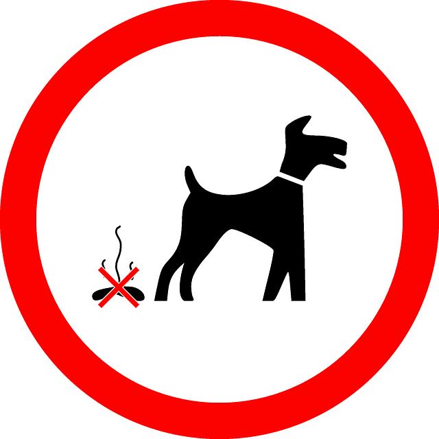 感染源となる恐れも。犬のふん尿処理はしっかりと。
