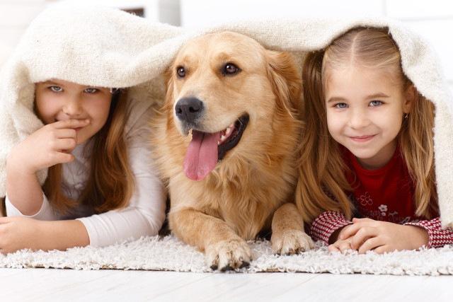あなたはどちら?犬と人間では犬の方が人々の共感を集めるという実験結果