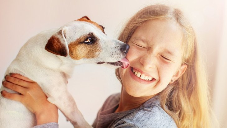 犬が飛びつく理由や心理とは しつけの方法や噛む原因について