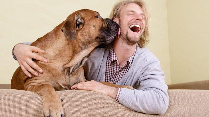 イギリス発、半数以上の飼い主が自分よりも犬の健康を優先という調査結果