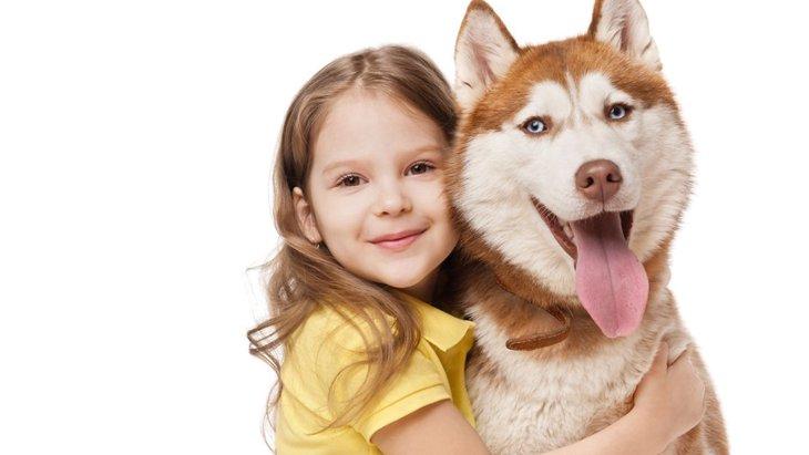 大型犬を抱っこするコツ!保定の仕方から注意点まで