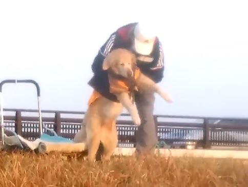 通勤途中のある風景 おじさんと老犬の『10メートルの約束』