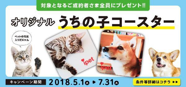 世界に1つだけ★ペットの写真入りコースターキャンペーン実施中!