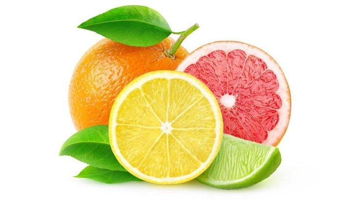 犬が柑橘類を食べるメリット!ただし与える際に注意が必要です