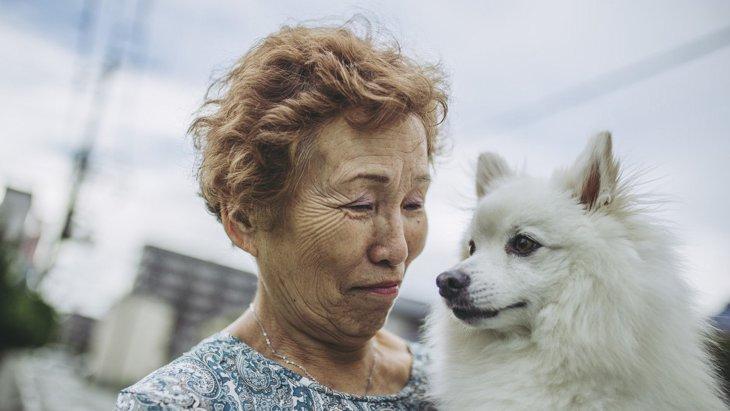 犬の老後を考えて!快適に過ごしてもらうための『生活習慣』6選