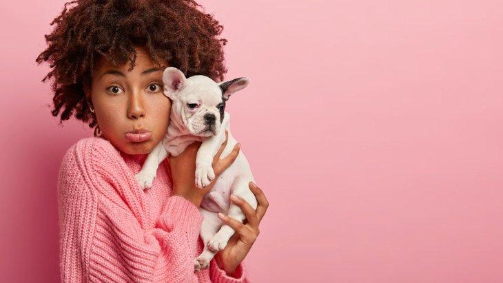 犬を『抱っこしすぎる』のは良くない!?考えられる悪影響とは?
