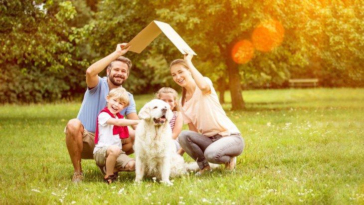 犬にとっての心地よい空間とは?作り方から注意点まで