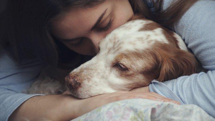 無責任な飼い主…病院に置き去りにされた犬『くーちゃん』
