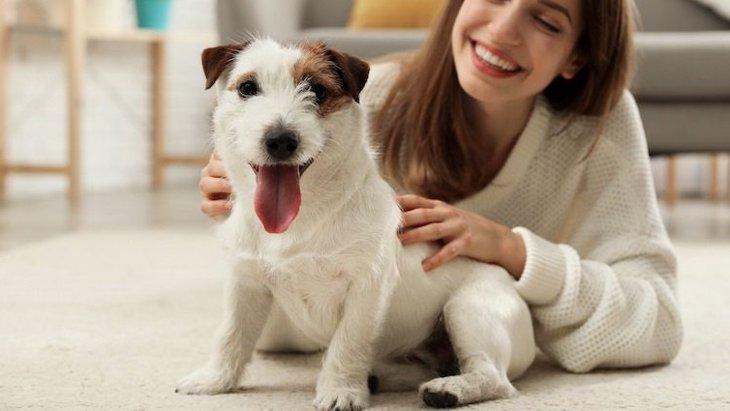 愛犬に感謝を伝える『4つの方法』 日頃のありがとうを上手に伝えるには?