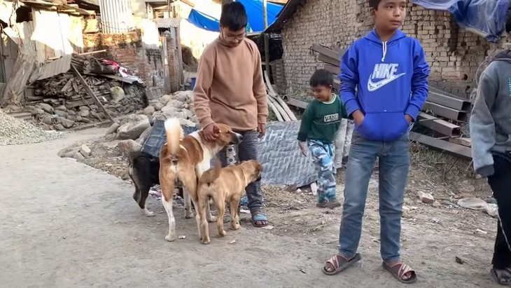 【犬の国のネパール】野良犬×現地の子供たちの関係性に感動!