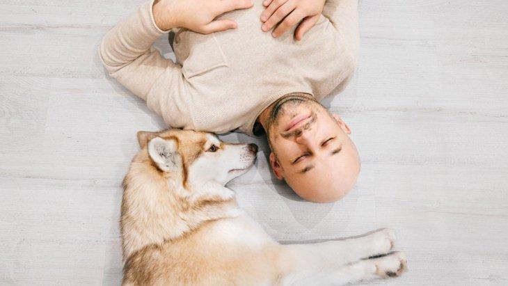 犬と人、両方の心の幸せ度を高くする2つの方法【研究結果】