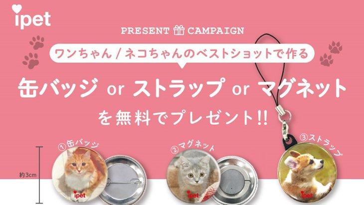 愛するワンちゃん・ネコちゃんといつも一緒に!缶バッジプレゼントキャンペーン実施中!!