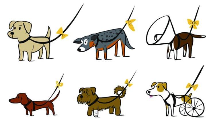 イエロードッグプロジェクトについて。黄色いリボンは犬を見守るサイン