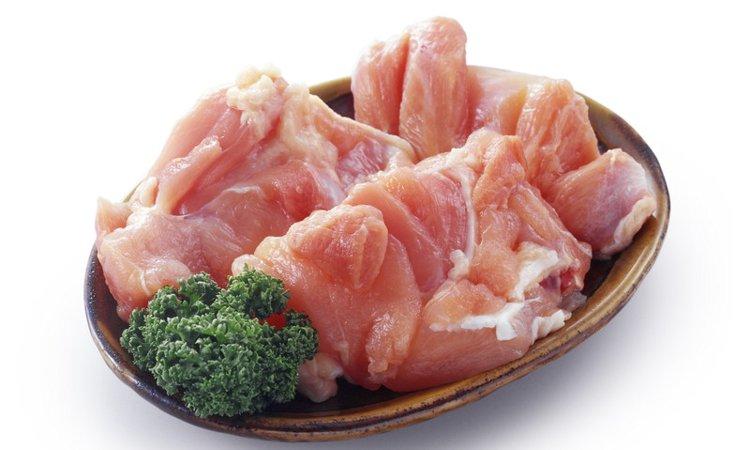 愛犬に鶏肉を食べさせてスタミナ回復!栄養の秘密とおすすめレシピ