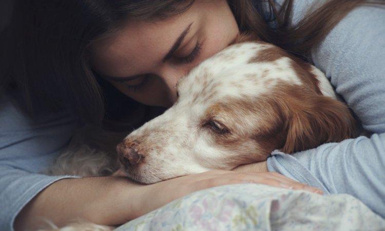 愛犬に捧げる最高の愛とは?