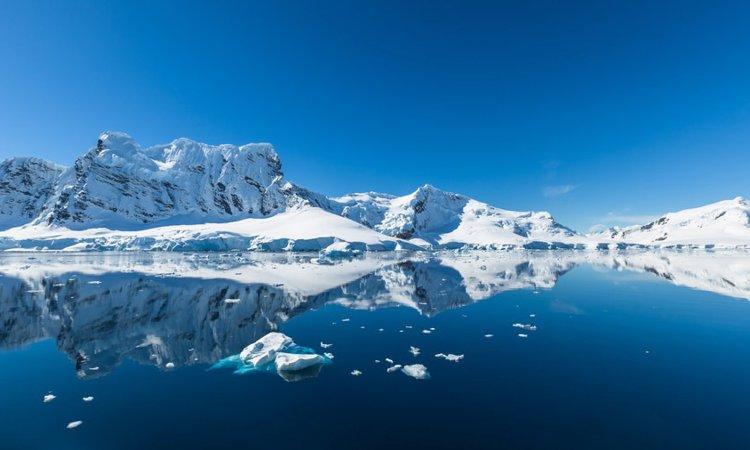 南極物語のモデルとなった樺太犬タロとジロの生涯とは