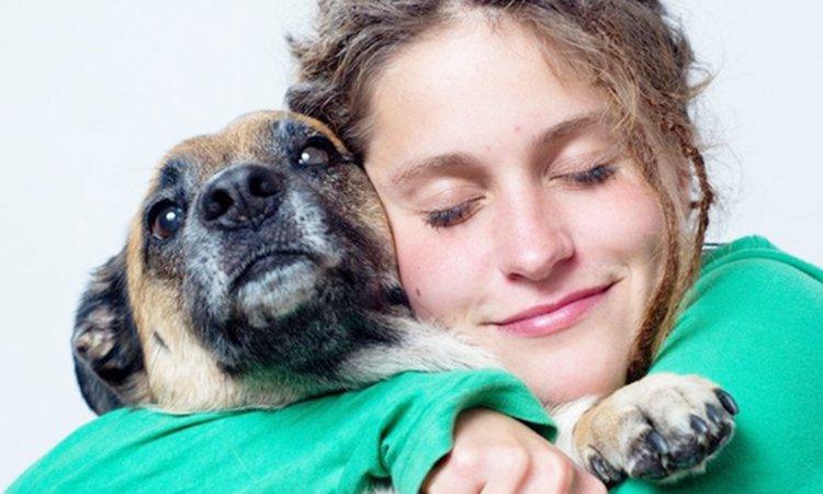 優しい虐待があることを知っていますか?犬が好きなら好きなほど要注意なんです