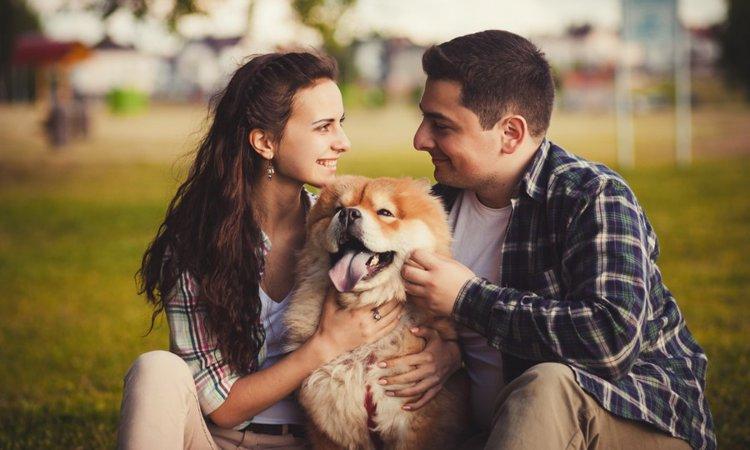 犬は人間の性別を見分けられるの?