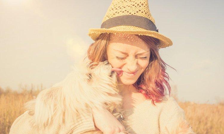 犬が安心しているときに見せる5つの仕草や行動