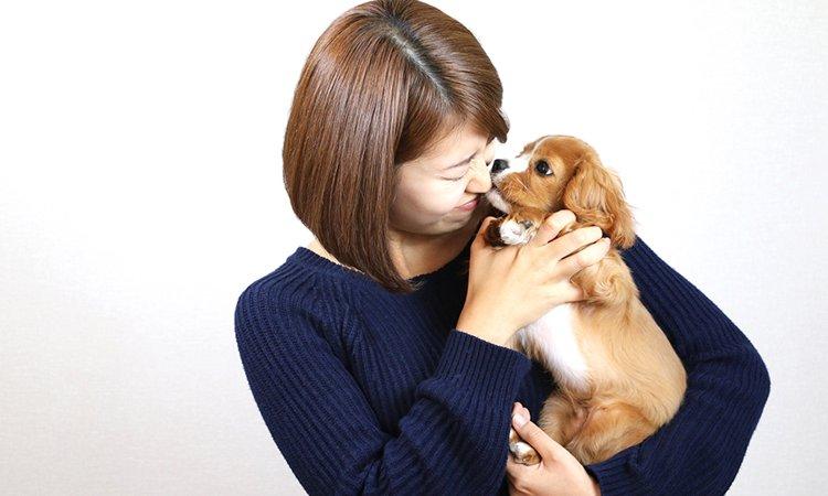 犬は恩を忘れないと言う説は本当なの?