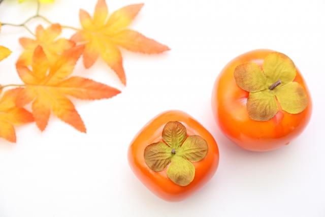 犬は柿を食べても良いの?わんちゃんに与える場合の量や注意点