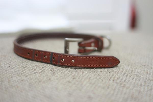 フリーステッチ(free stitch)!おすすめの犬の首輪ブランド