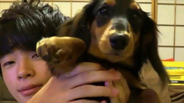 朝起きたら大量の●●に囲まれた愛犬。どんな反応をする?!(動画)