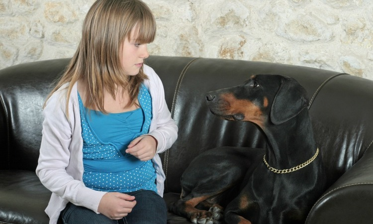 【しつけの際に多い!】犬が飼い主に不信感を持つ瞬間って?