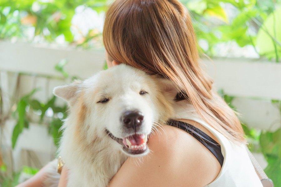 246114079 愛犬をハグする女性