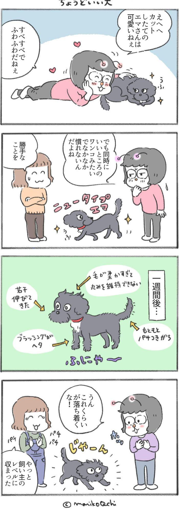 犬と暮らせば【第187話】