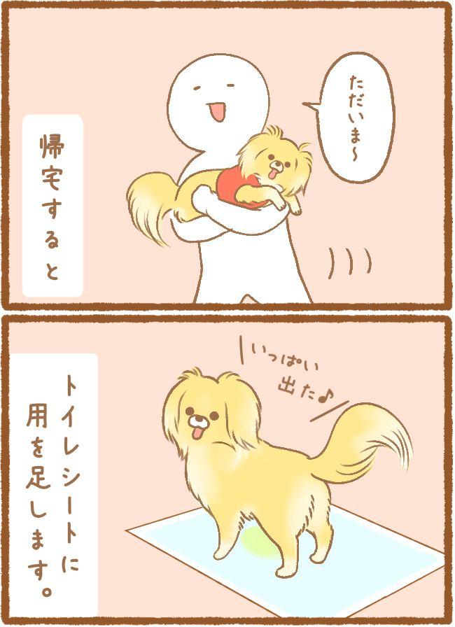 ただの犬好きです。第21話 おしっこ事情2