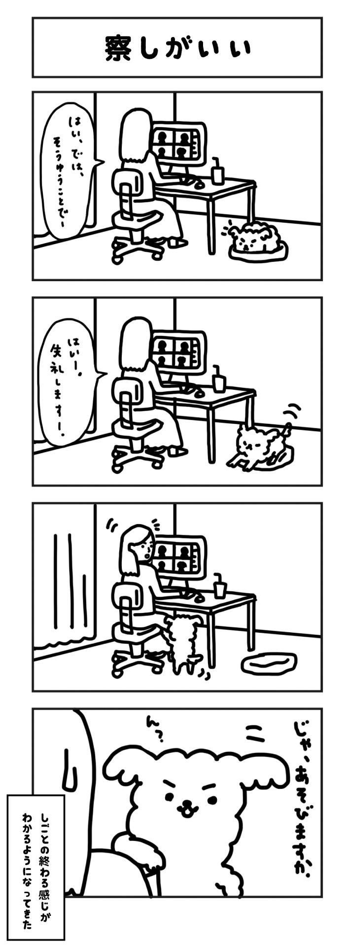 がんばれ もこたろう【第116話】