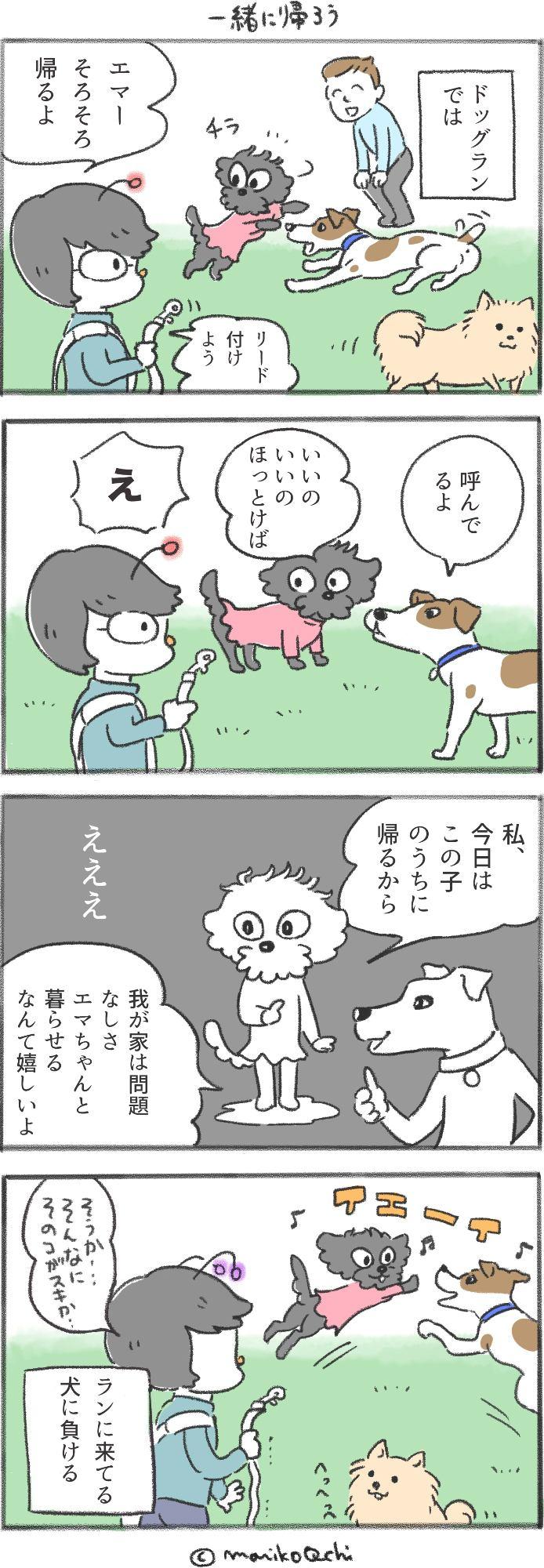 犬と暮らせば第26話
