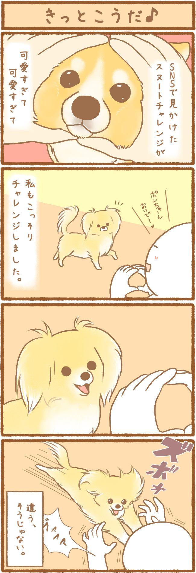 ただの犬好きです。第16話