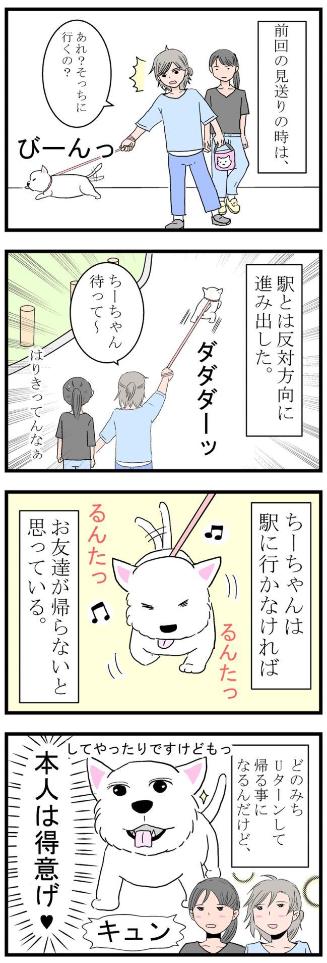 ちーちゃんの知恵袋2