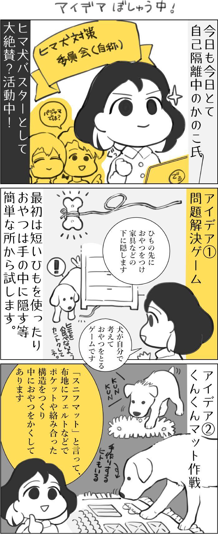 くりかのこ アメリカ犬暮らし第15話1枚目