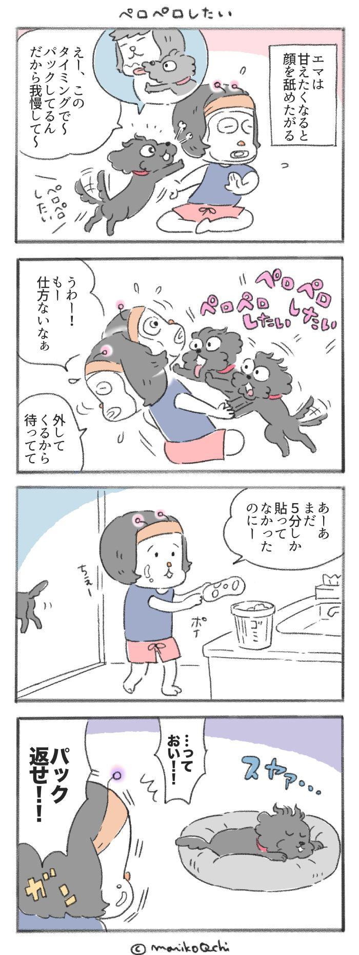 犬と暮らせば【第228話】