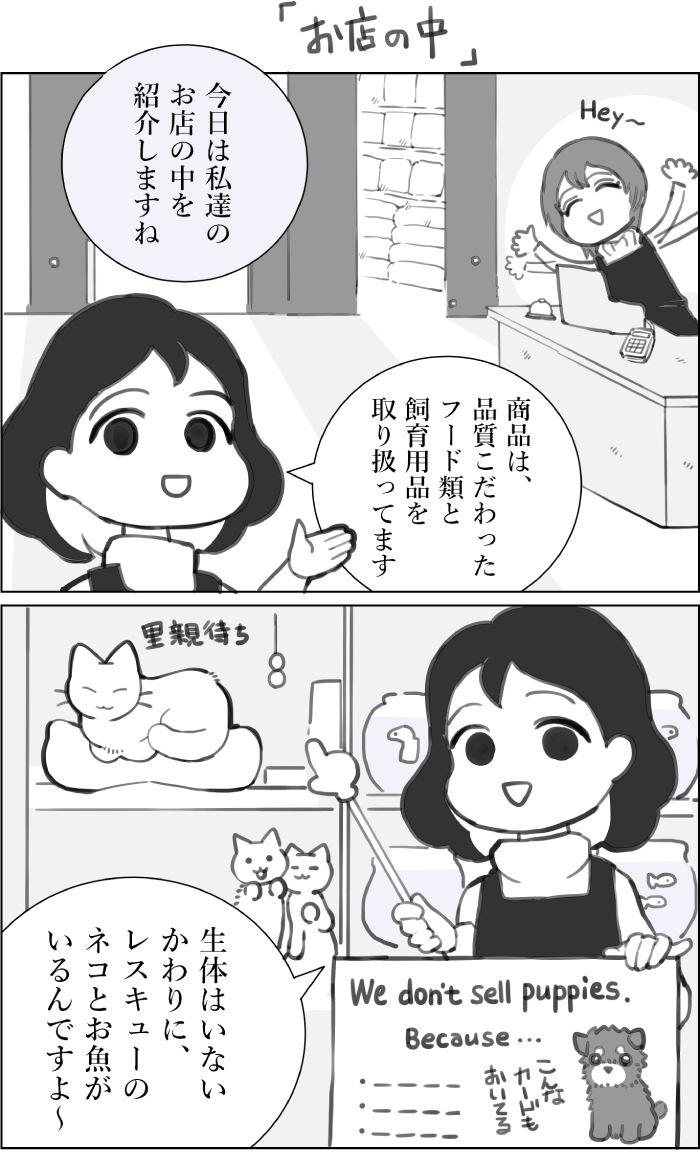 くりかのこ アメリカ犬暮らし第19話1枚目