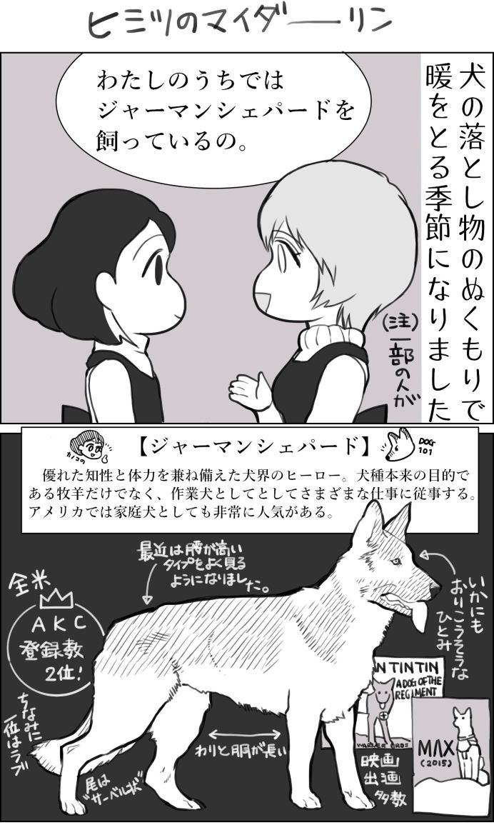 くりかのこ アメリカ犬暮らし 第6話1枚目