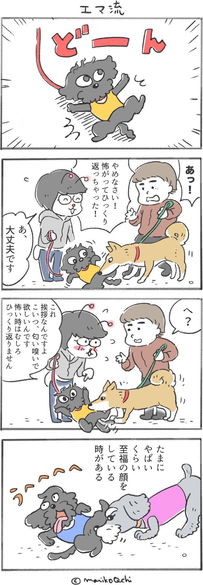 犬と暮らせば第34話