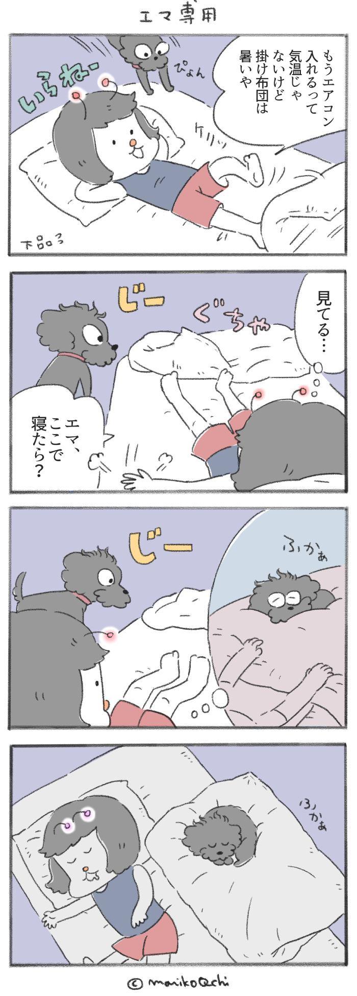 犬と暮らせば【第229話】「エマ専用」