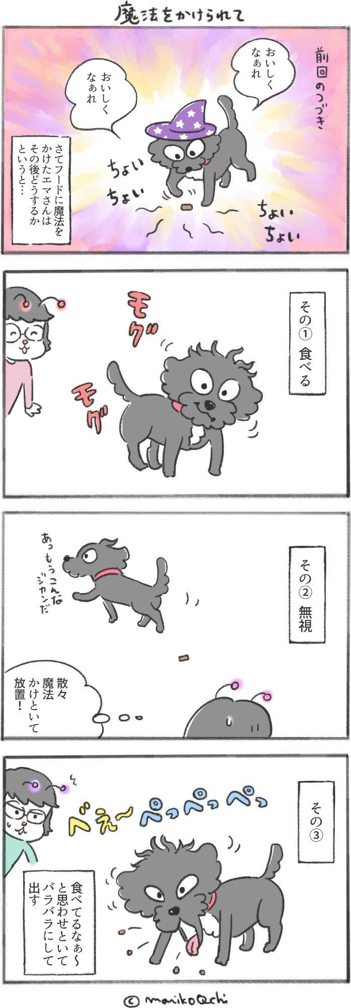 犬と暮らせば第81話