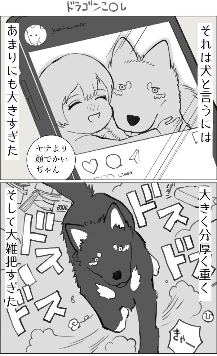 くりかのこ アメリカ犬暮らし第21話1枚目